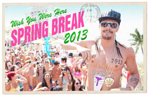 Spring Breakers Blu ray postcard